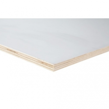 Populier int 9 mm 250x122 cm wit primed b/bb
